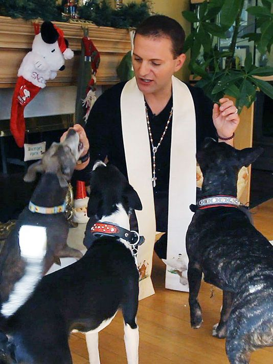 Blessing Of All Animals by Matty Giuliano